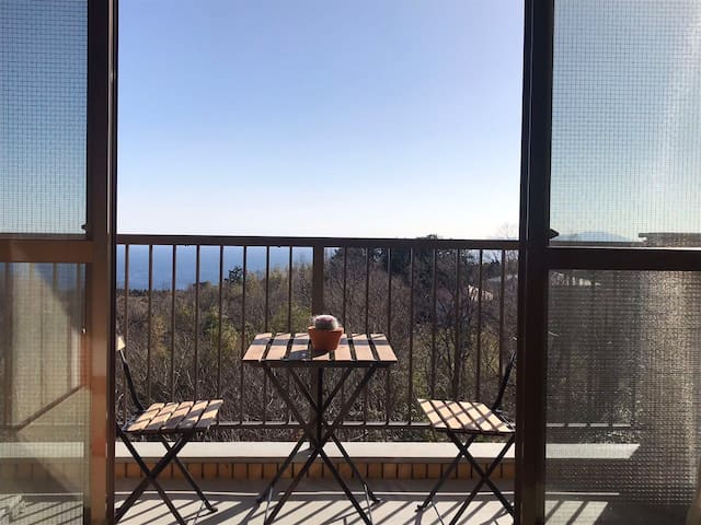 The suite's balcony overlooks both the garden and Sagami Bay view.