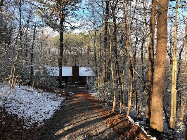 Piney Mountain Cabin