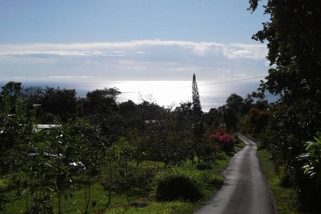Country roads, take me home... Our farm is on the left. Check out the amazing view of the Pacific Ocean!