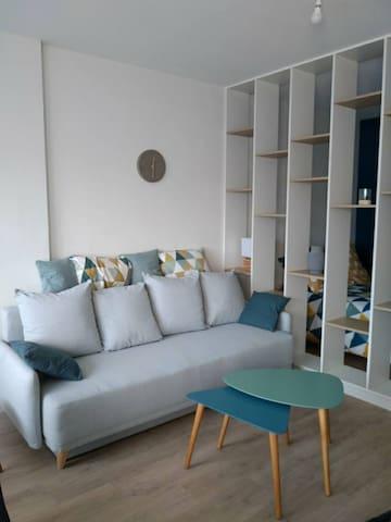 Bel appartement entièrement rénové en hypercentre