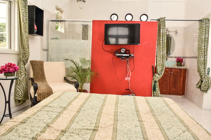 """View from the bed. Smart 32"""" television along with cable tv"""