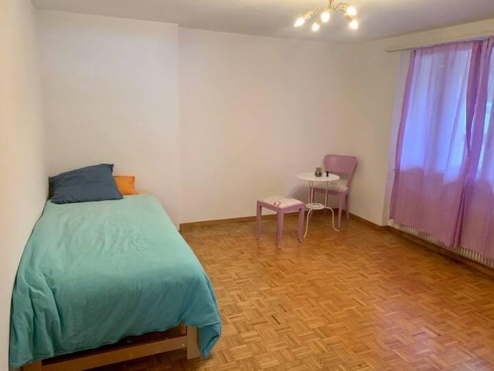 SOMA Apartment in Kandersteg