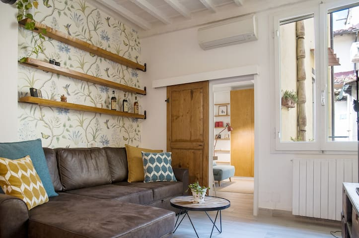 Apartment in historic Florence near Santa Croce