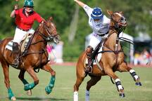 Enjoy the activities at the polo club