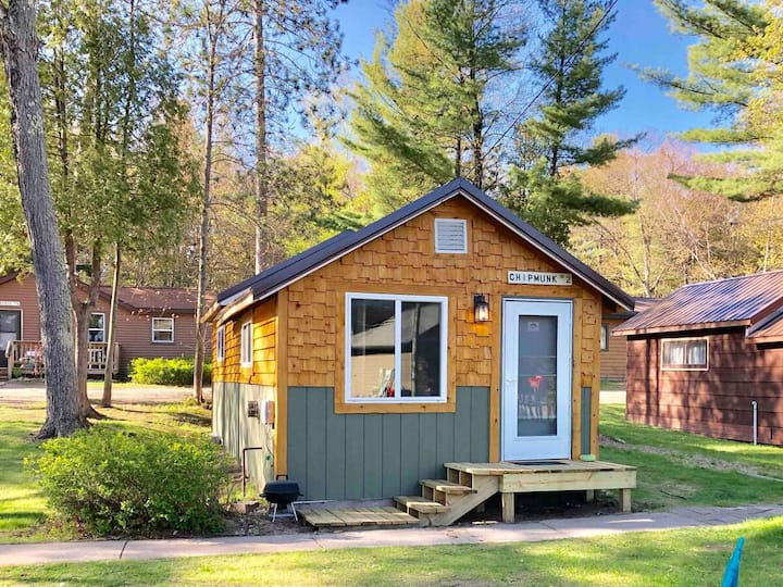 2 chipmunk · The perfect clean cozy cabin for your UP vacation!