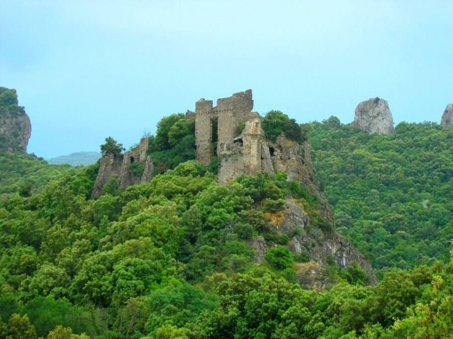 château de Durfort à vignevieille