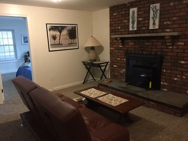 Living room with futon couch. Fireplace is not for guest use.