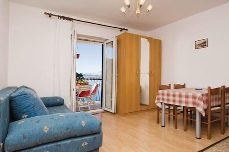 1 Bedroom Apts in Novigrad - Novigrad