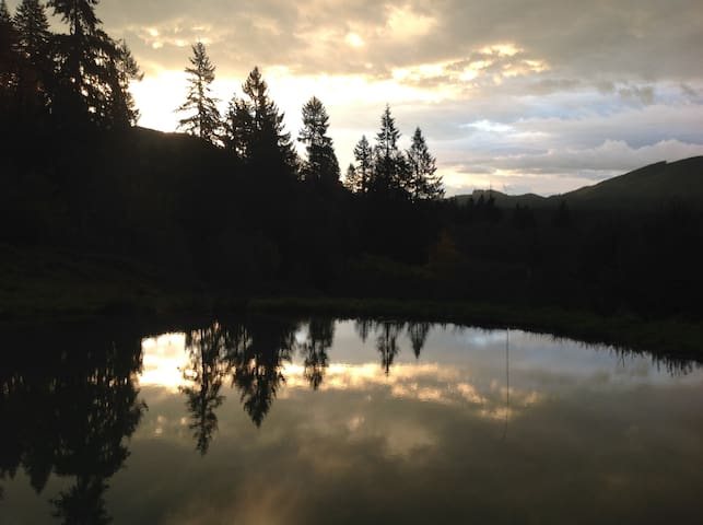 The pond below the cabins---a mirror to the sky.