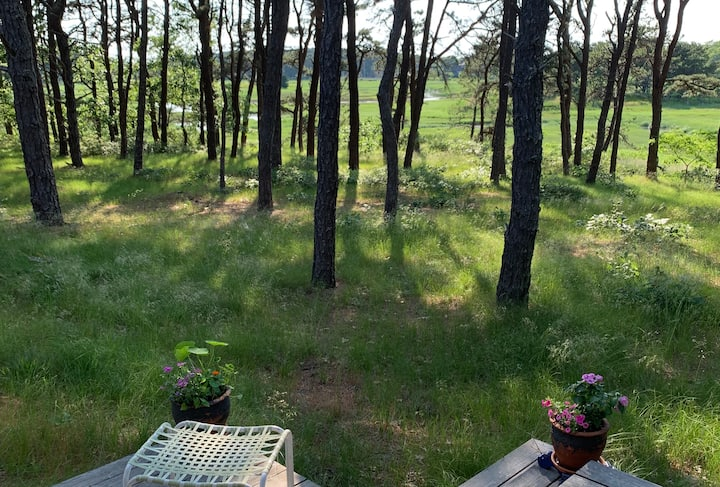 Sunfilled studio in Wellfleet woods w/ marsh views