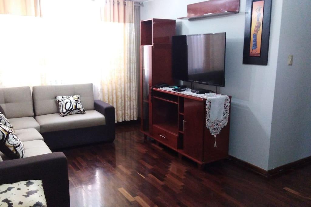armario television