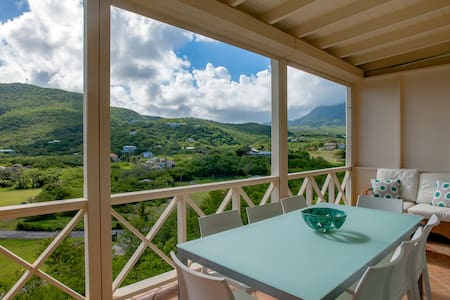 Tangerine, a Refreshing Look at Nevis
