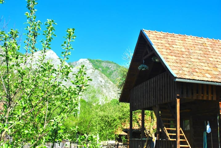 Tara Nomada Hostel Apuseni Mountains Private Bed