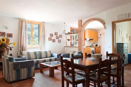 "Farm house Lucciano"" Cypress"""