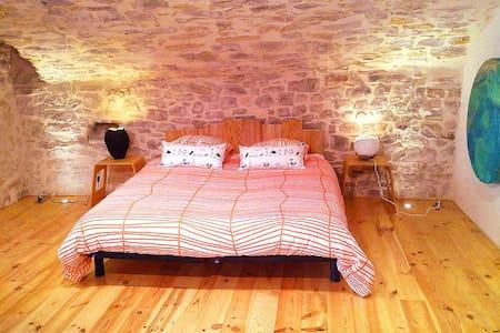 Maison atypique du 11e siècle - Logrian-Florian