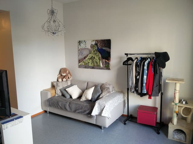 Affordable apartment right in city centre - Tampere
