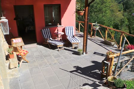 Little Tuscan Olive Farm - Cosy Apartment - Castelvecchio, Pescia
