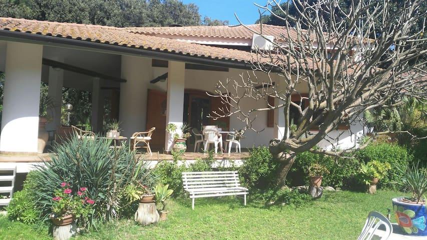 Alba Rosa Gardenhouse - Palerme - Loft