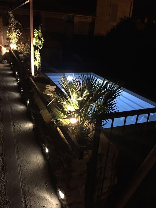 Jardin et piscine de nuit 1