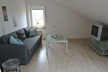 Charming apartment where three countries meet - Grenzach-Wyhlen - Wohnung