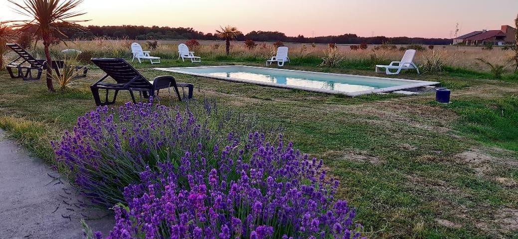Grande Ferme rénovée avec piscine privee 9x4