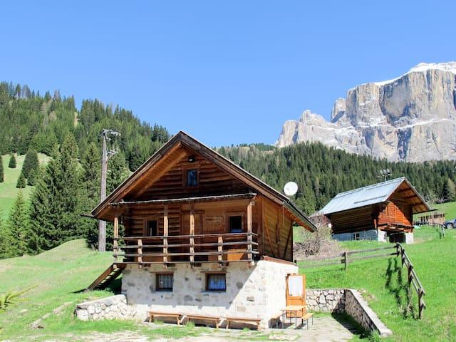 Baita Lupo Bianco (CZI755)