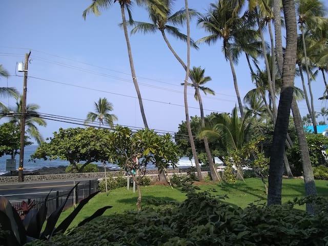 Downtown Kona with ocean feet away