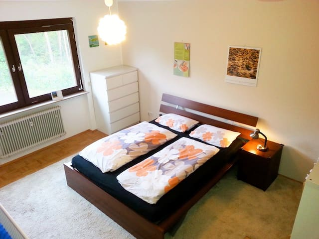 Large Room with free parking - Griesheim - Apartamento