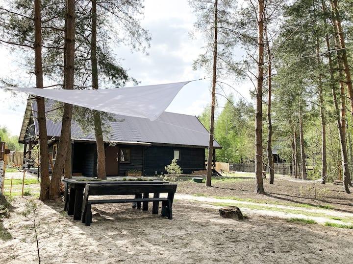 Las Zielone - domek pod lasem na Roztoczu