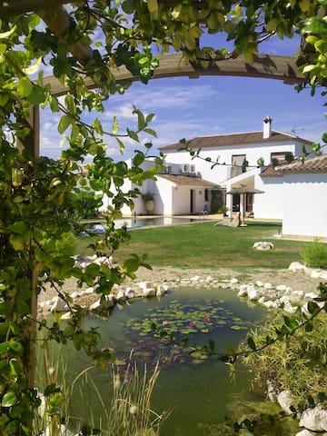 Casa y jardín con encanto - La Carlota - Chalet