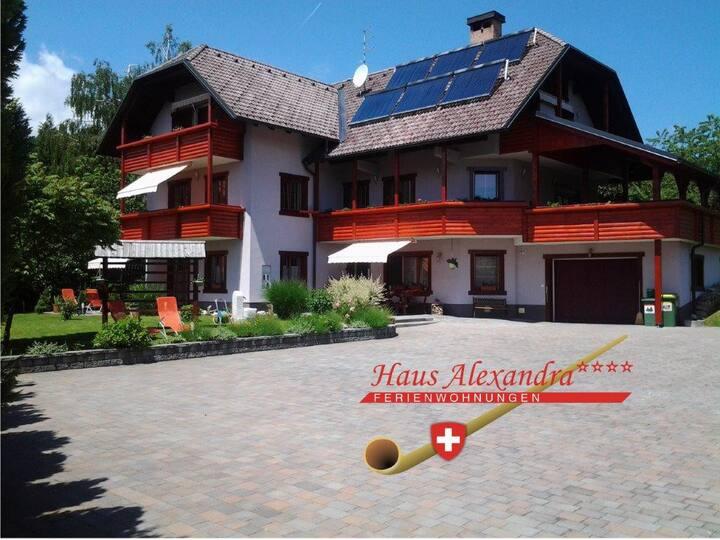 Haus Alexandra ****  FeWo 1 - Blick auf Karawanken