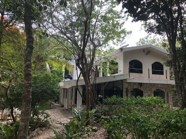 Amazing House in the Jungle next to Cenotes!