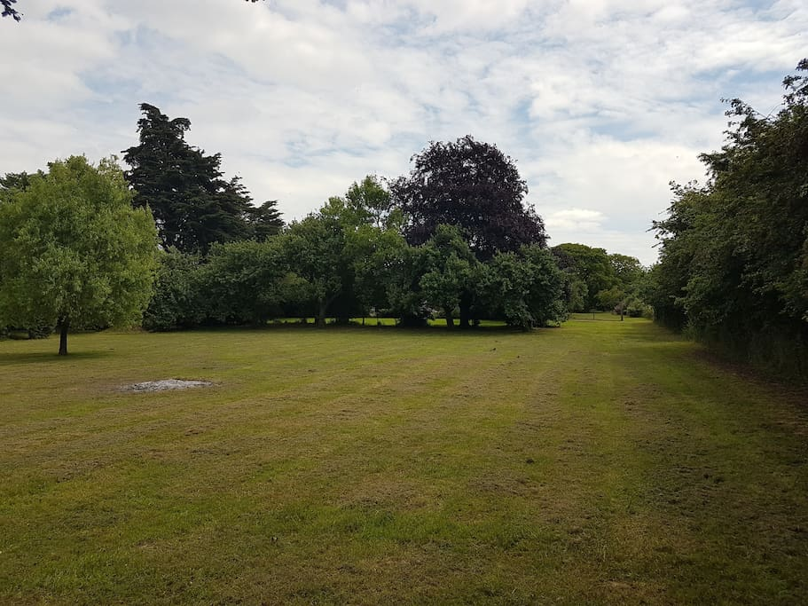 The other front lawn with a view up to the orchard