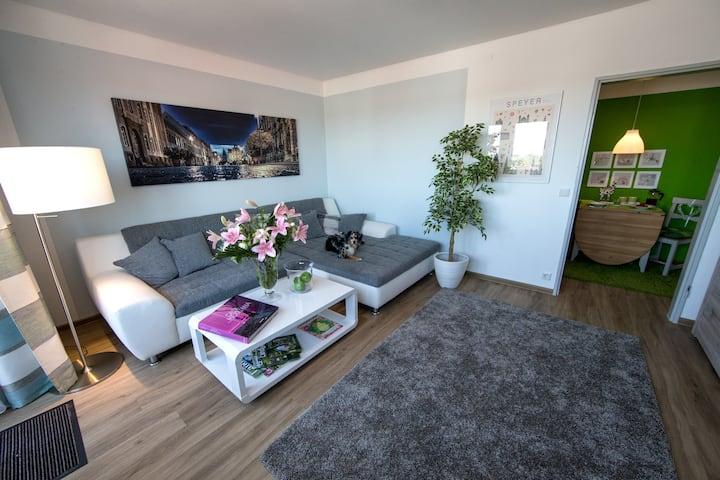 Dom Panorama IV-1  TWO room Apartm.+Balkony+WIFI