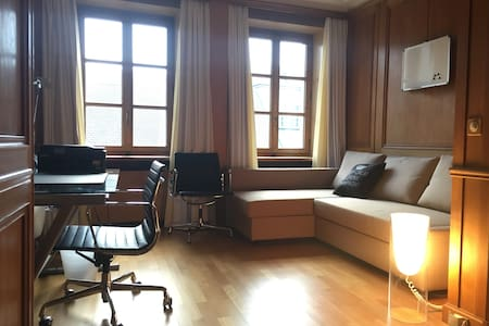 Very functional, cosy studio in heart of Old town - เจนีวา - อพาร์ทเมนท์