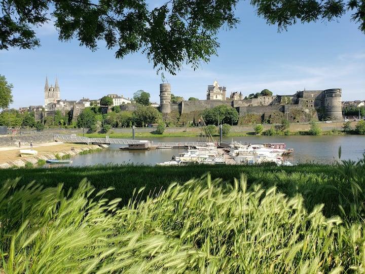 The Château *** : amazing castle view + garden