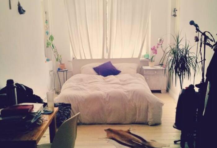 Zimmer in heller Altbauwohnung mit Charme