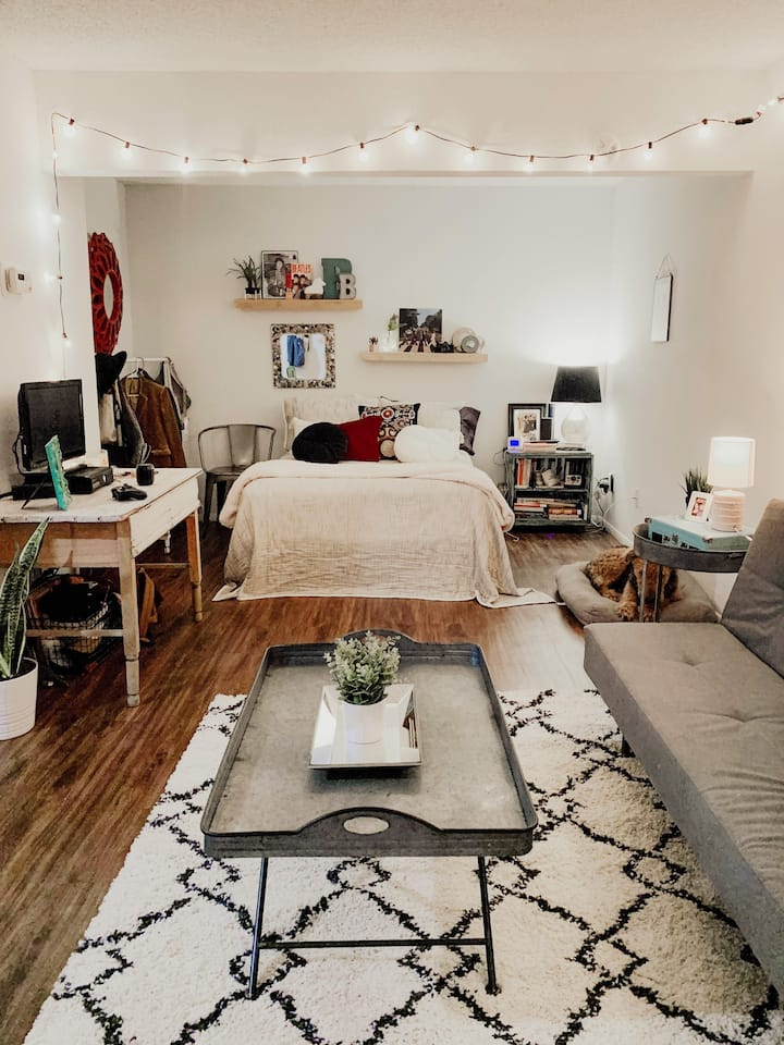 Cosy Studio Apartment By Greenbelt Trail, Zilker