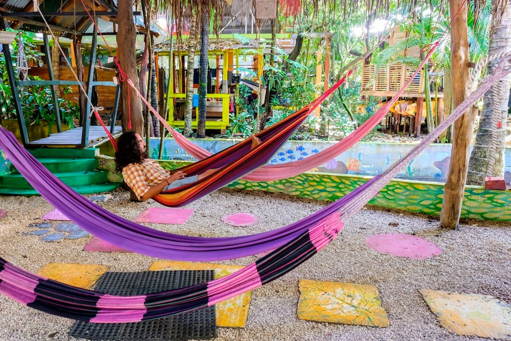 Hang out in our hammocks for a chat, a read or even a nap!