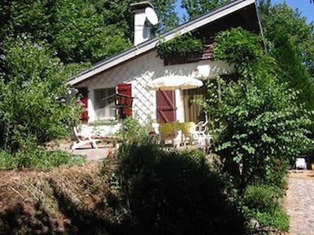 Sunny villa at lakeside - La Salvetat-sur-Agout - Haus
