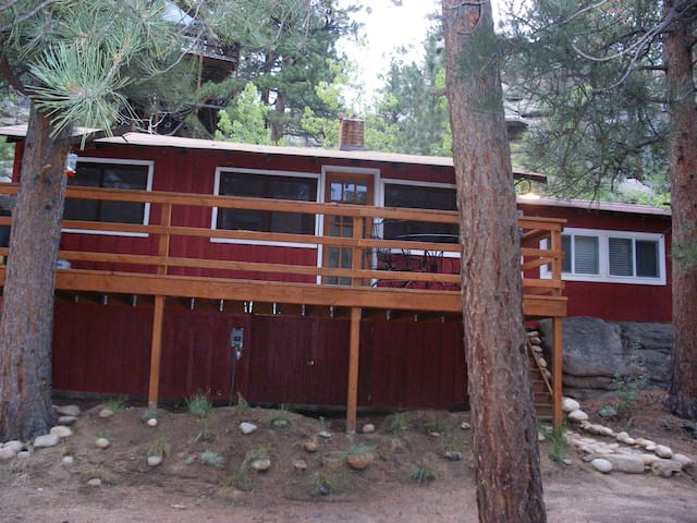 Immaculate, Riverside, 1920's Seashell River Cabin - Drake