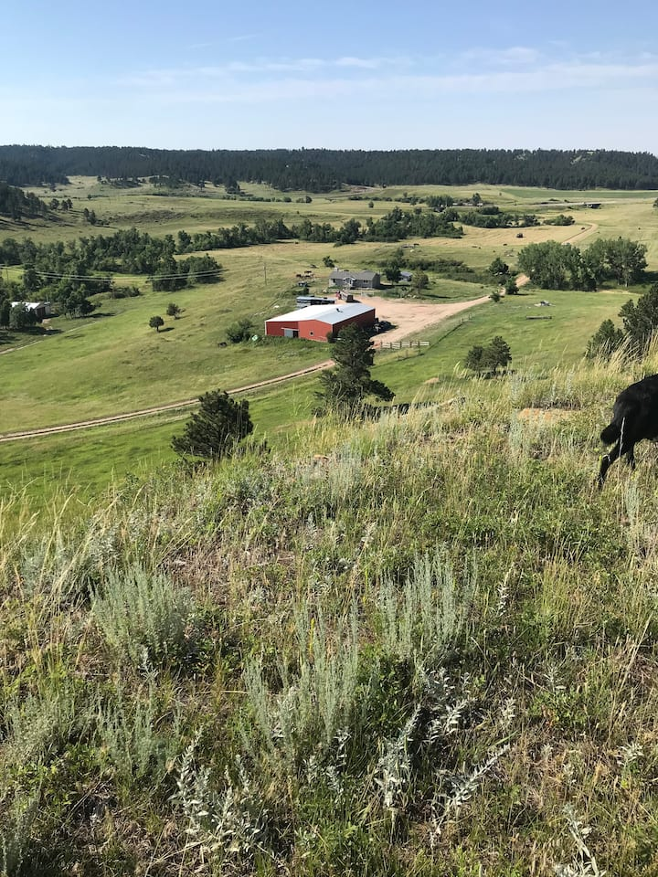 Houston Creek Ranch Lookout