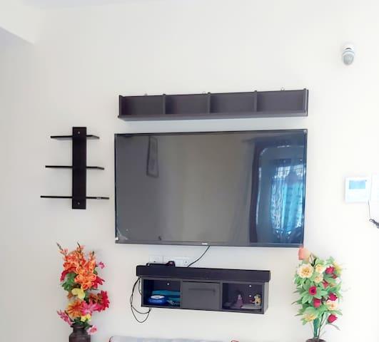 55 inch Smart TV.