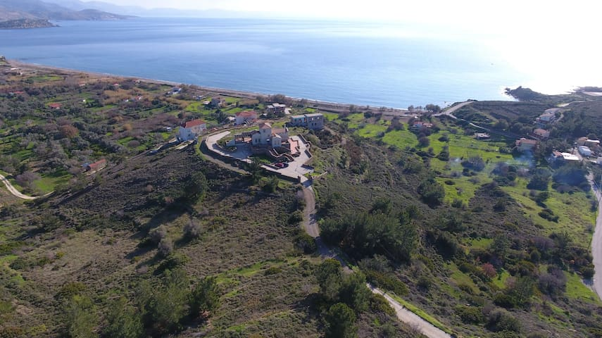Tuscan style Villa beside Shimmering Aegean Beach