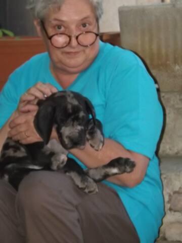 Flore avec le bébé dogue allemand ( 1 mois et 14 kgs a l'époque ) qui s'appelle Proust