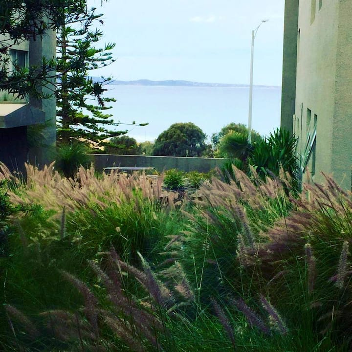 Cumberland Resort apartment- Lorne