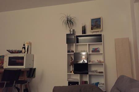 chambre dans appartement F3 tout neuf - Ollainville - 公寓