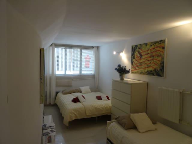 Apartamento Economi Rembrand (Liedtke Museo)