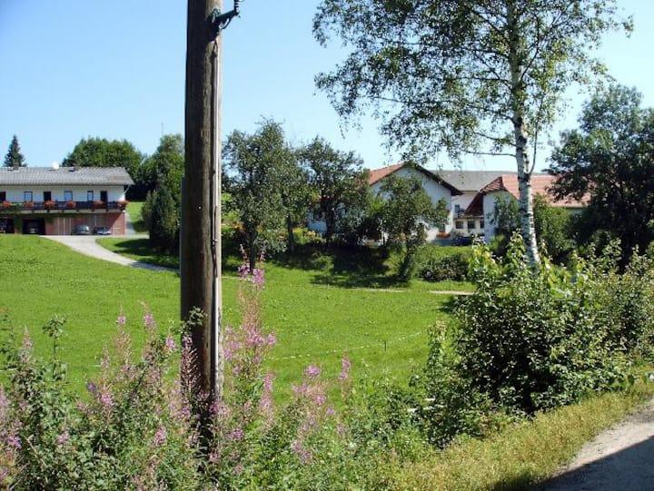 Ferienwohnungen am Bio-Bauernhof