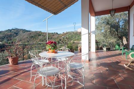 Agriturismo Olivaazzurra Guesthouse - Valeriano Lunense